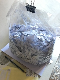 Five months worth of journal writing, shredded by hand.